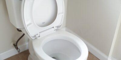 Broken Toilets